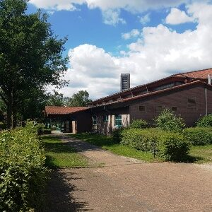 Halle-W3